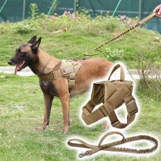Tactical λουρί σκύλου