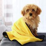 DryPaw πετσέτα κατοικιδίου