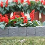 Σετ διαμόρφωσης κήπου FloralGrace